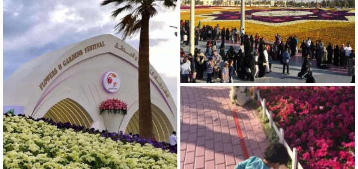 yanbu flower festival and the world record